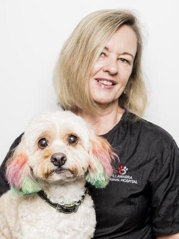 Wollongong Vet Holding A Dog