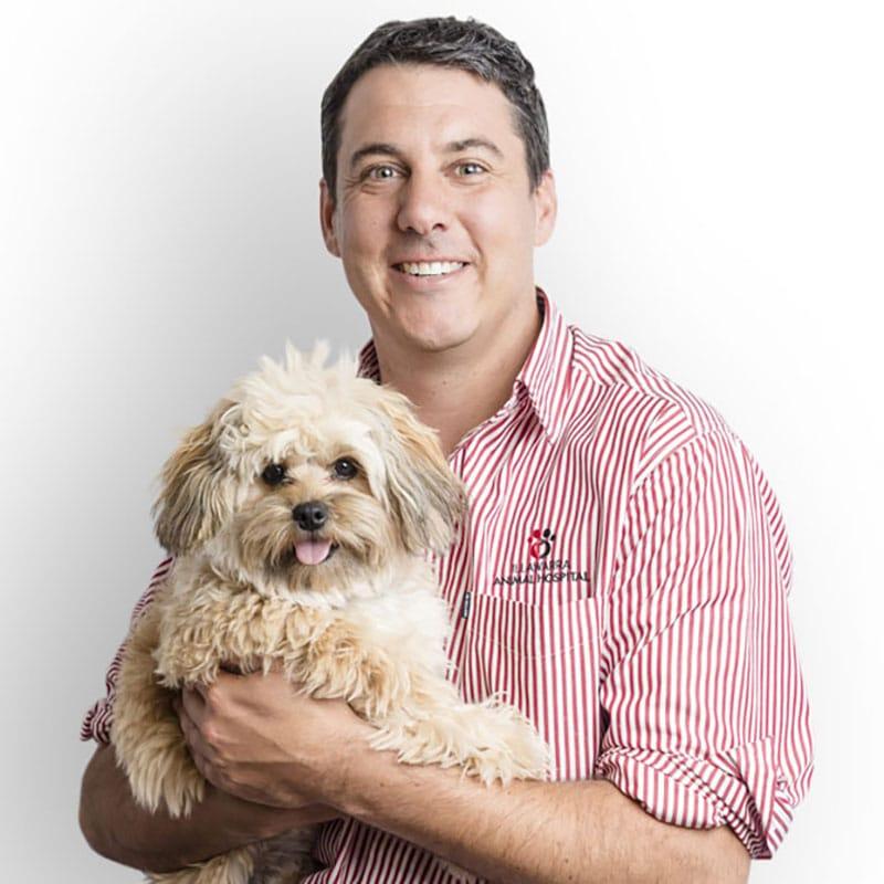 Paul veterinarian